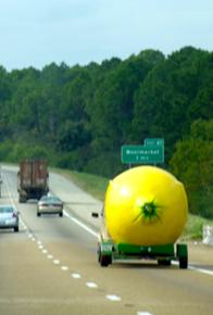 Lemonroad