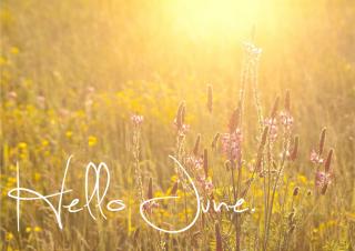 June_048